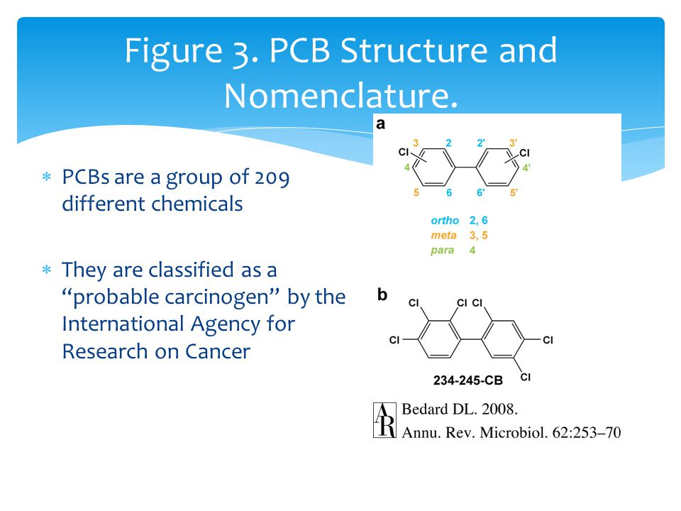 " PCBs are a group of 209 different chemicals  They are classified as a ""probable carcinogen"" by the International Agency for Research on Cancer Figu"