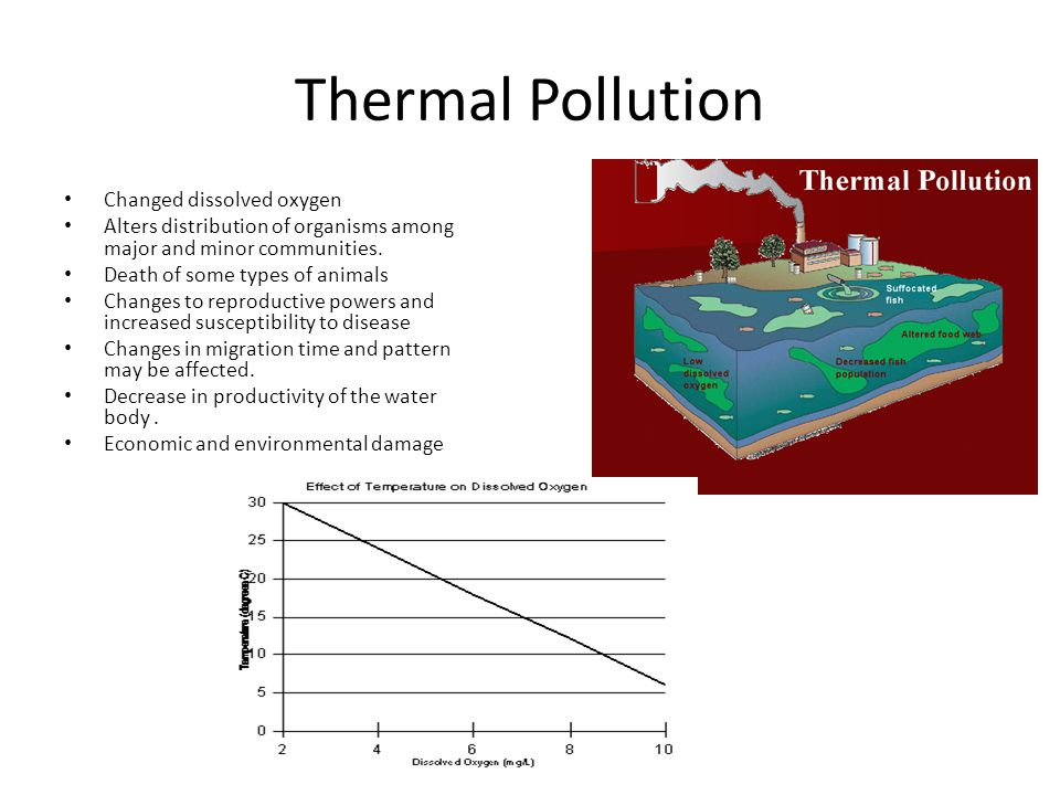 Thermal Pollution Changed dissolved oxygen Alters distribution of organisms among major and minor communities.