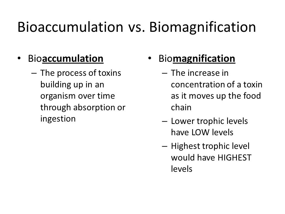 Bioaccumulation vs.