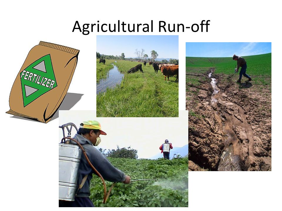 Agricultural Run-off