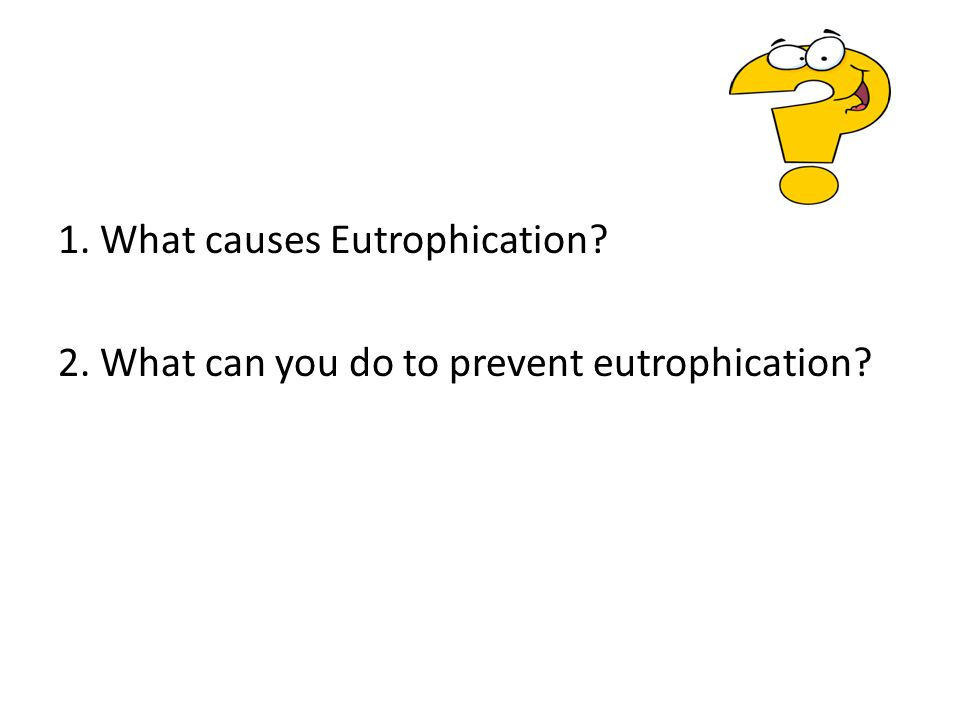 1. What causes Eutrophication? 2. What can you do to prevent eutrophication?