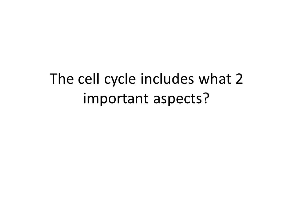 The cell cycle includes what 2 important aspects
