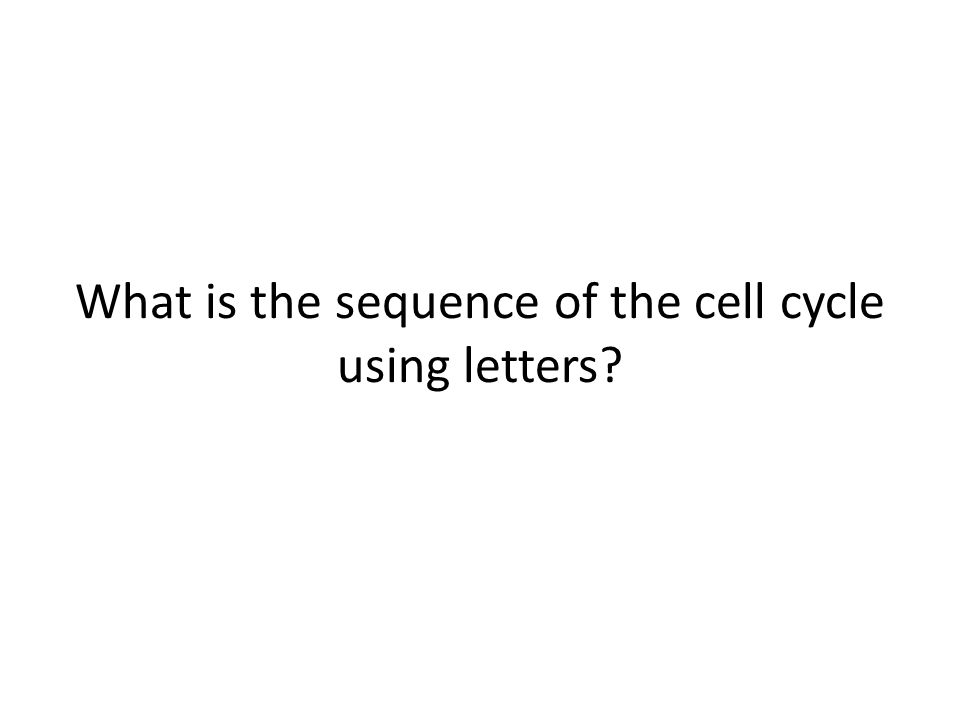 What is the sequence of the cell cycle using letters