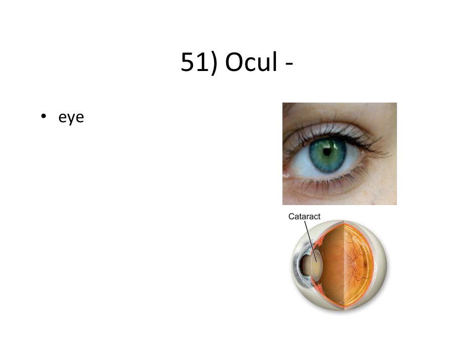 51) Ocul - eye