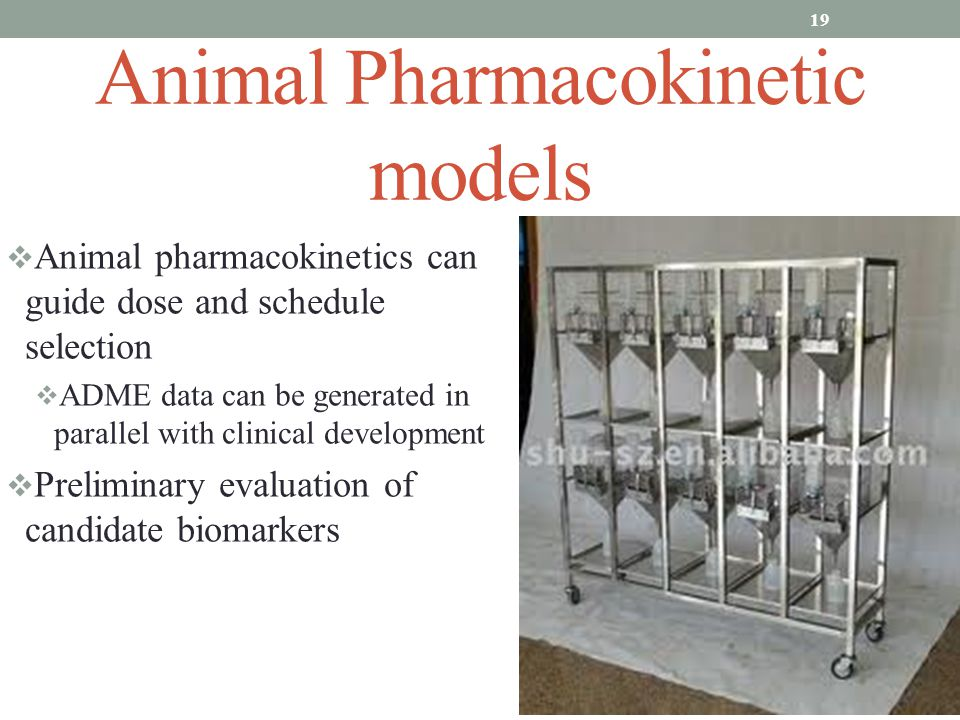 Animal Pharmacokinetic models  Animal pharmacokinetics can guide dose and schedule selection  ADME data can be generated in parallel with clinical development  Preliminary evaluation of candidate biomarkers 19