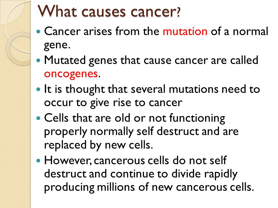What Causes Cancer? Lifestyle Environment Family History