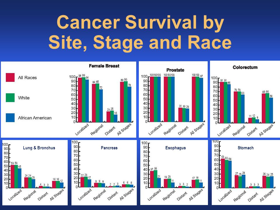 Lung & BronchusPancreasEsophagusStomach Cancer Survival by Site, Stage and Race