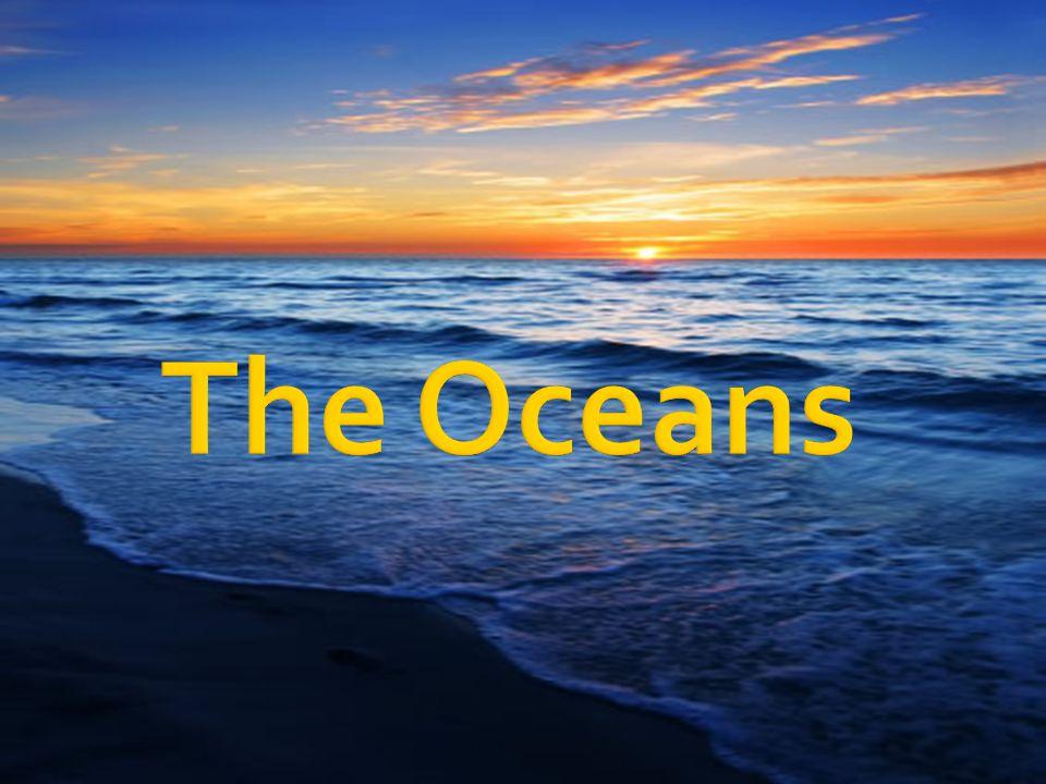  Continental Margin – near the continents  Ocean Basin – deep ocean areas