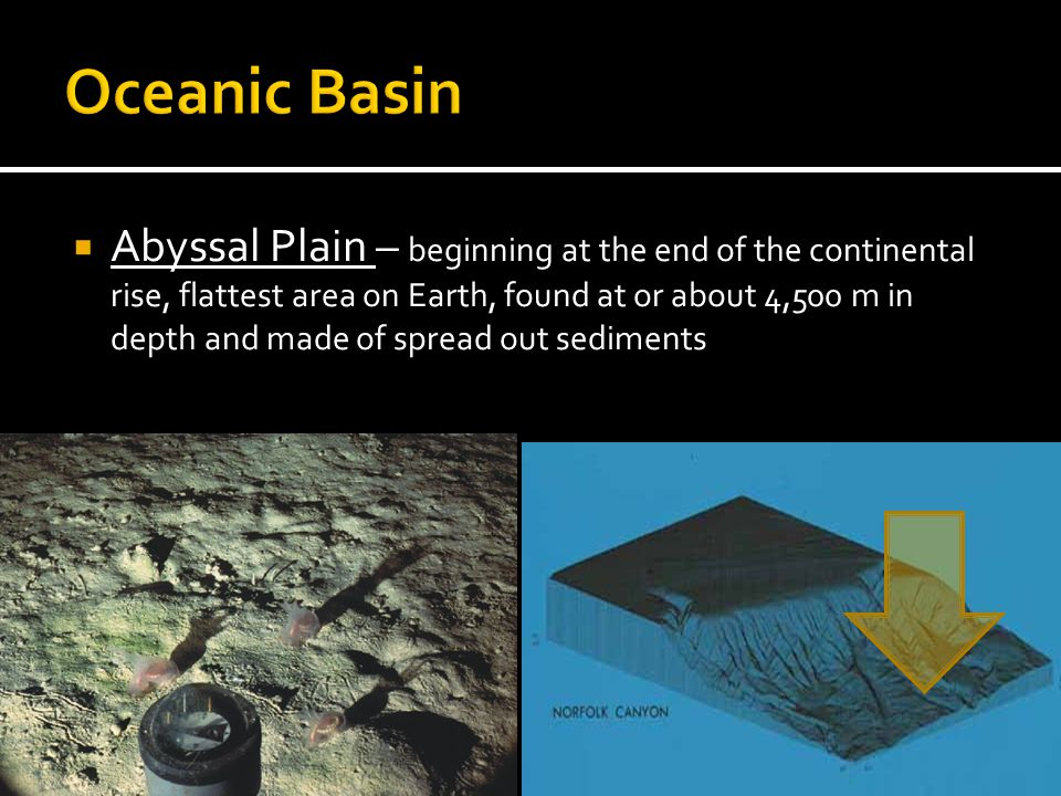  Abyssal Plain – beginning at the end of the continental rise, flattest area on Earth, found at or about 4,500 m in depth and made of spread out sediments