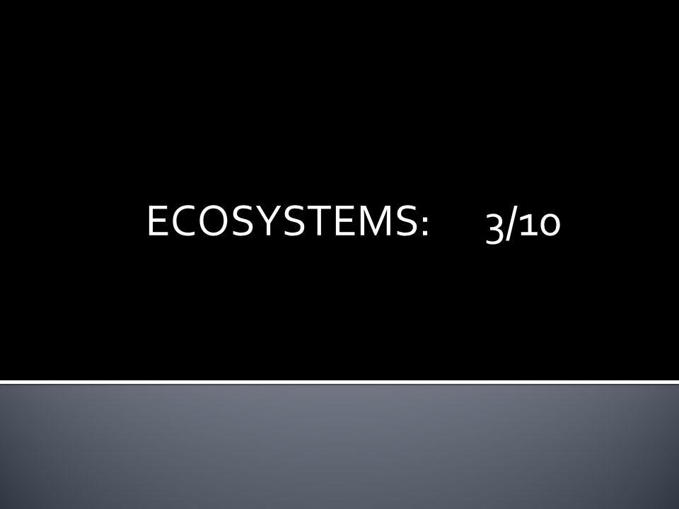 ECOSYSTEMS:3/10