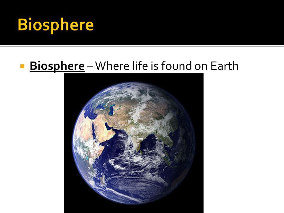  Biosphere – Where life is found on Earth