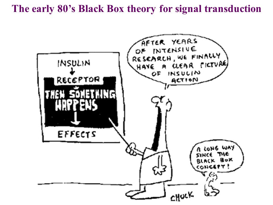 The early 80's Black Box theory for signal transduction
