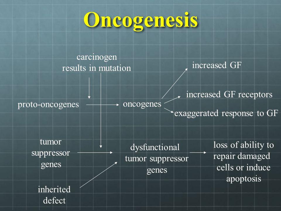 Classes of Oncogenes A.Secreted Growth Factors B.