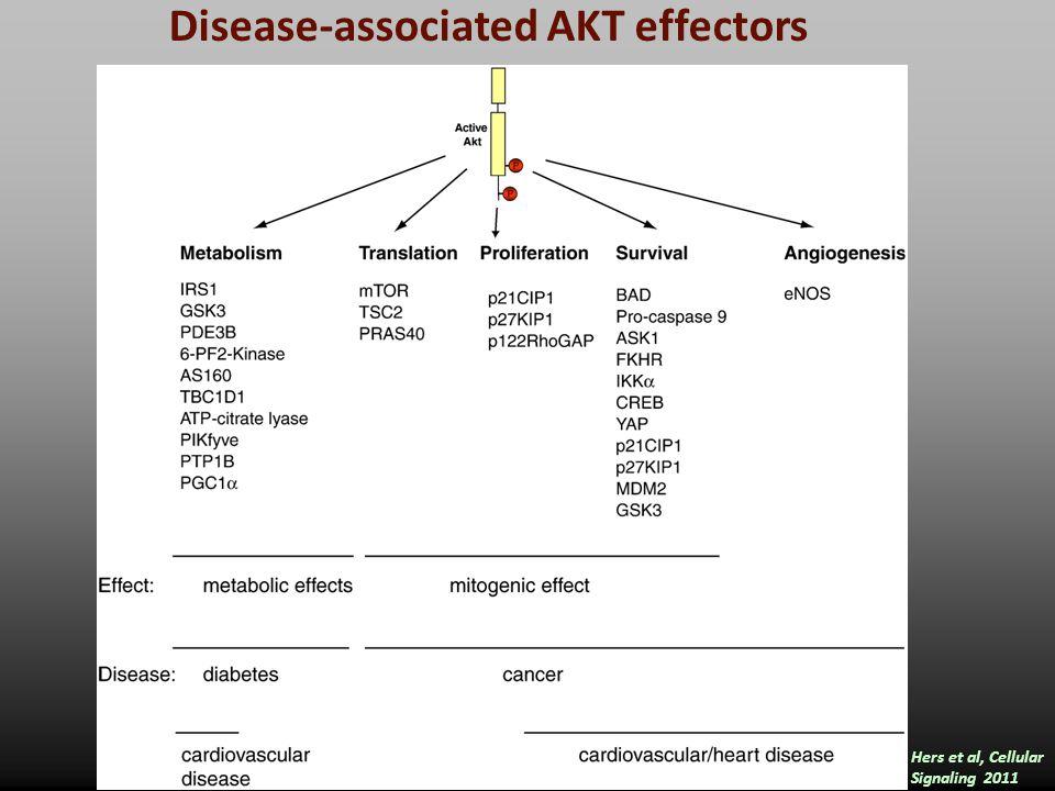 Disease-associated AKT effectors Hers et al, Cellular Signaling 2011