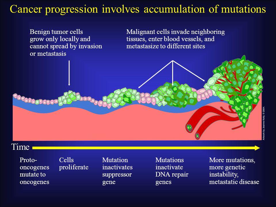 Mechanisms of GF signaling activation: 3.Mutation in signaling molecules: b.