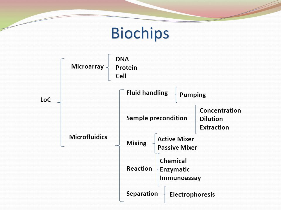 LoC Microarray Microfluidics DNA Protein Cell Fluid handling Sample precondition Mixing Reaction Separation Pumping Concentration Dilution Extraction