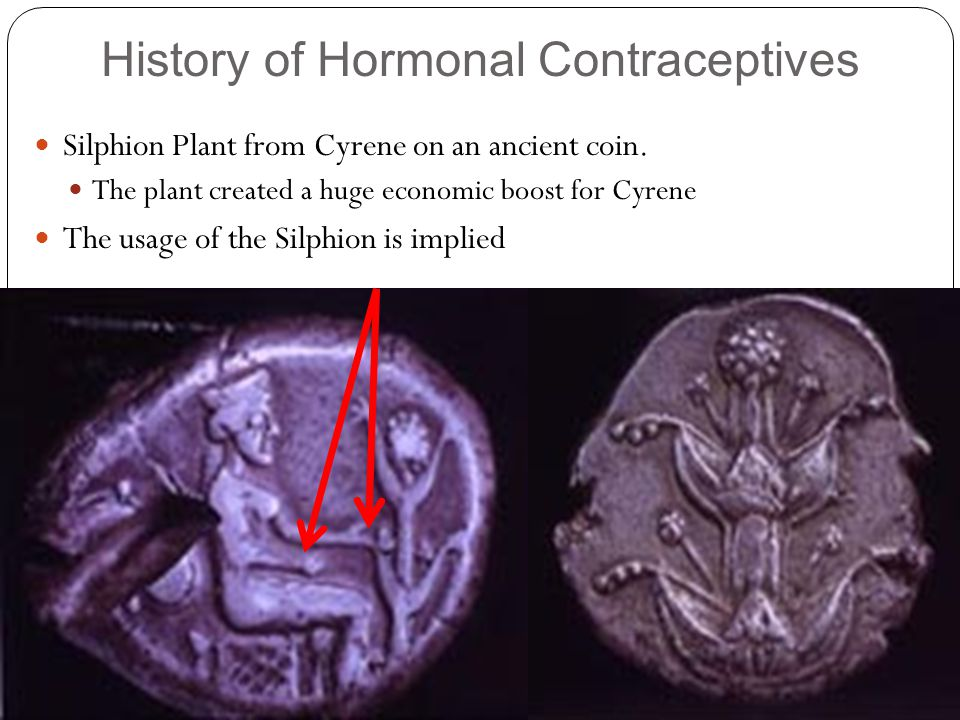 History of Hormonal Contraceptives Silphion Plant from Cyrene on an ancient coin.