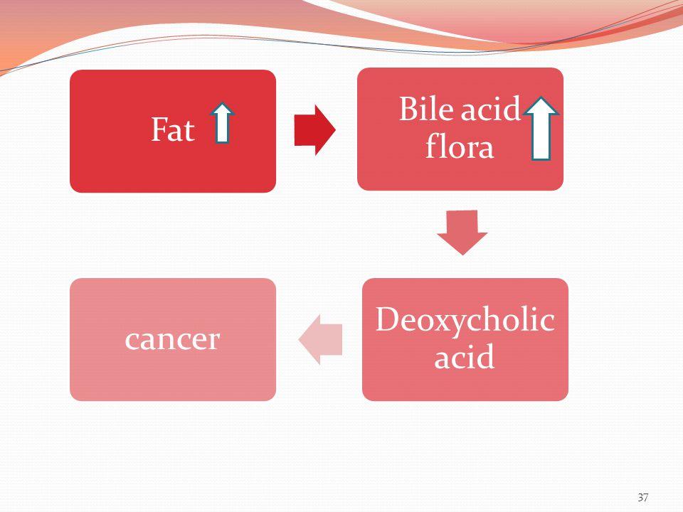 37 Fat Bile acid flora Deoxycholic acid cancer