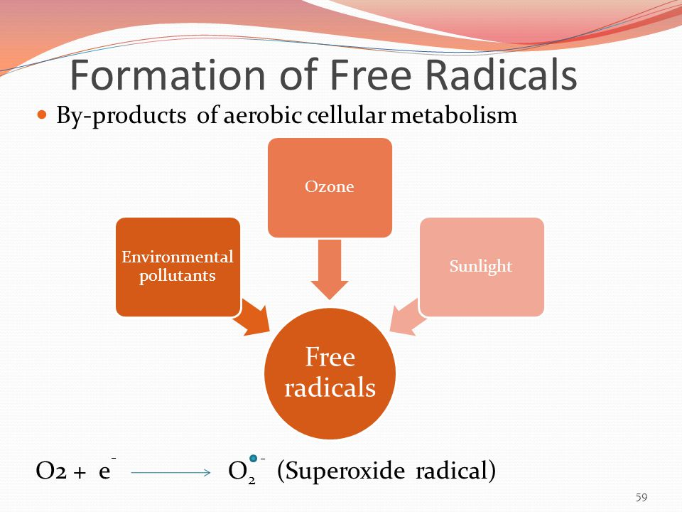Formation of Free Radicals By-products of aerobic cellular metabolism O2 + e - O 2 - (Superoxide radical) Free radicals Environmental pollutants OzoneSunlight 59
