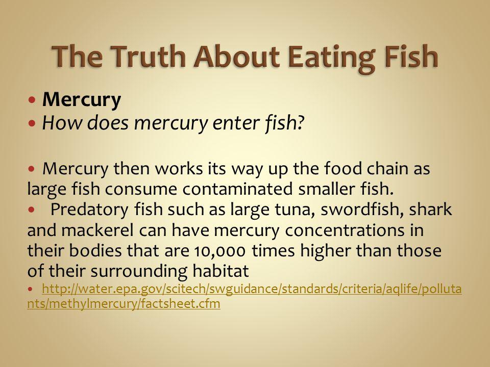 How Mercury Enters the Environment http://www.epa.gov/mercury/exposure.htm