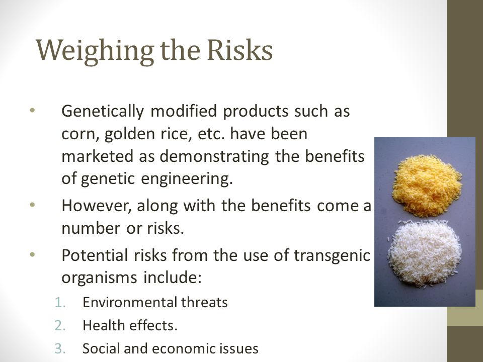 Weighing the Risks Genetically modified products such as corn, golden rice, etc. have been marketed as demonstrating the benefits of genetic engineeri