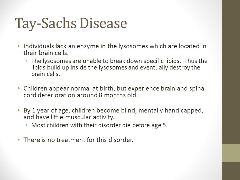 Tay-Sachs Disease Individuals lack an enzyme in the lysosomes which are located in their brain cells. The lysosomes are unable to break down specific