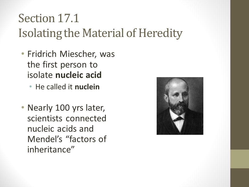 Section 17.1 Isolating the Material of Heredity Fridrich Miescher, was the first person to isolate nucleic acid He called it nuclein Nearly 100 yrs la
