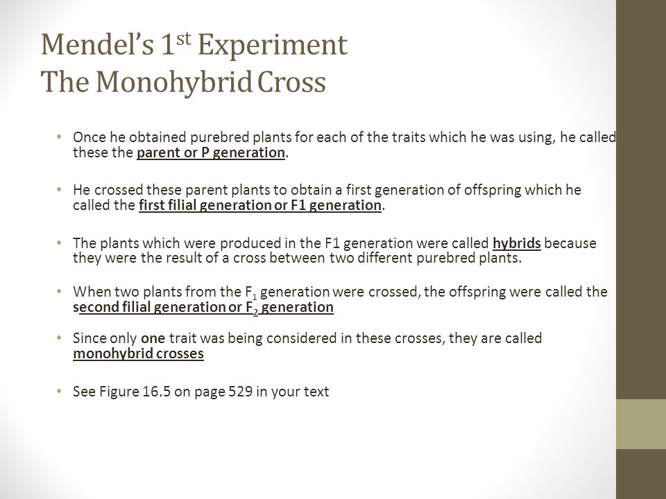 Mendel's 1 st Experiment The Monohybrid Cross Once he obtained purebred plants for each of the traits which he was using, he called these the parent o