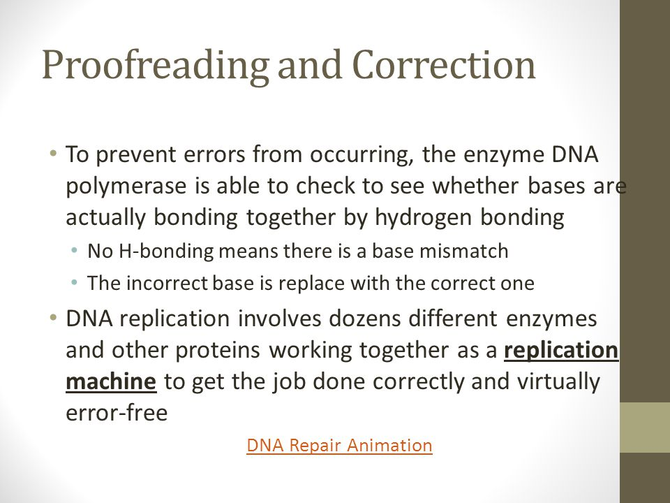 Proofreading and Correction To prevent errors from occurring, the enzyme DNA polymerase is able to check to see whether bases are actually bonding tog
