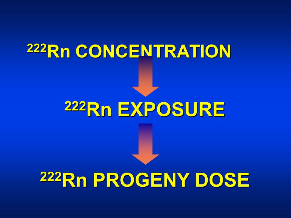 222 Rn CONCENTRATION 222 Rn EXPOSURE 222 Rn PROGENY DOSE