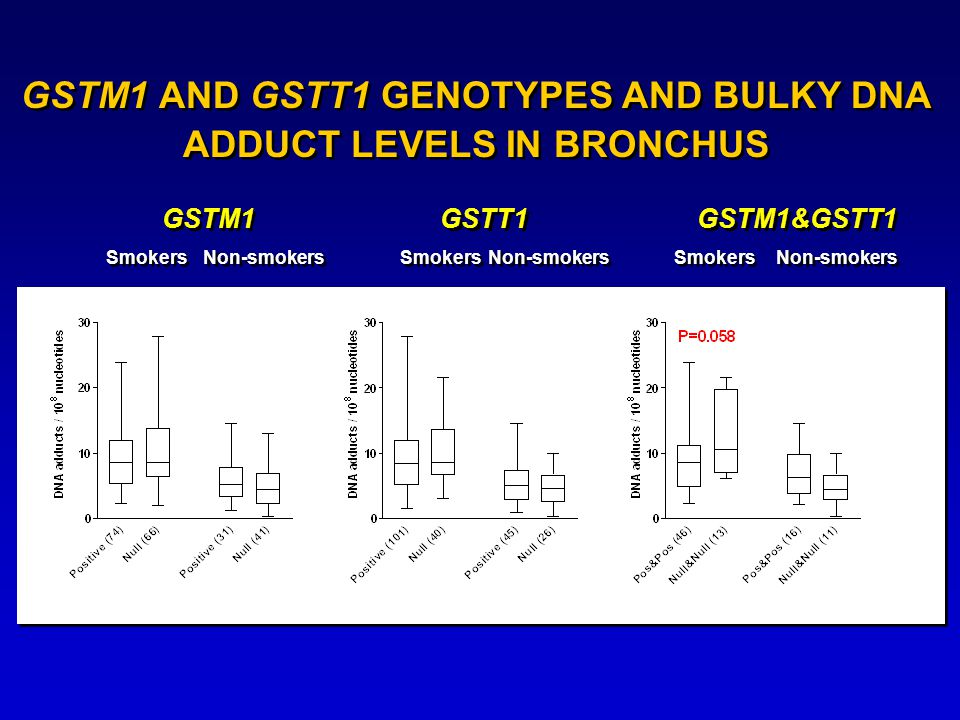 GSTM1 AND GSTT1 GENOTYPES AND BULKY DNA ADDUCT LEVELS IN BRONCHUS GSTM1 GSTM1&GSTT1 GSTT1 Smokers Non-smokers Smokers Non-smokers Smokers Non-smokers