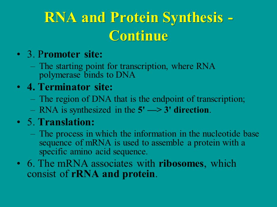 RNA and Protein Synthesis - Continue 3.
