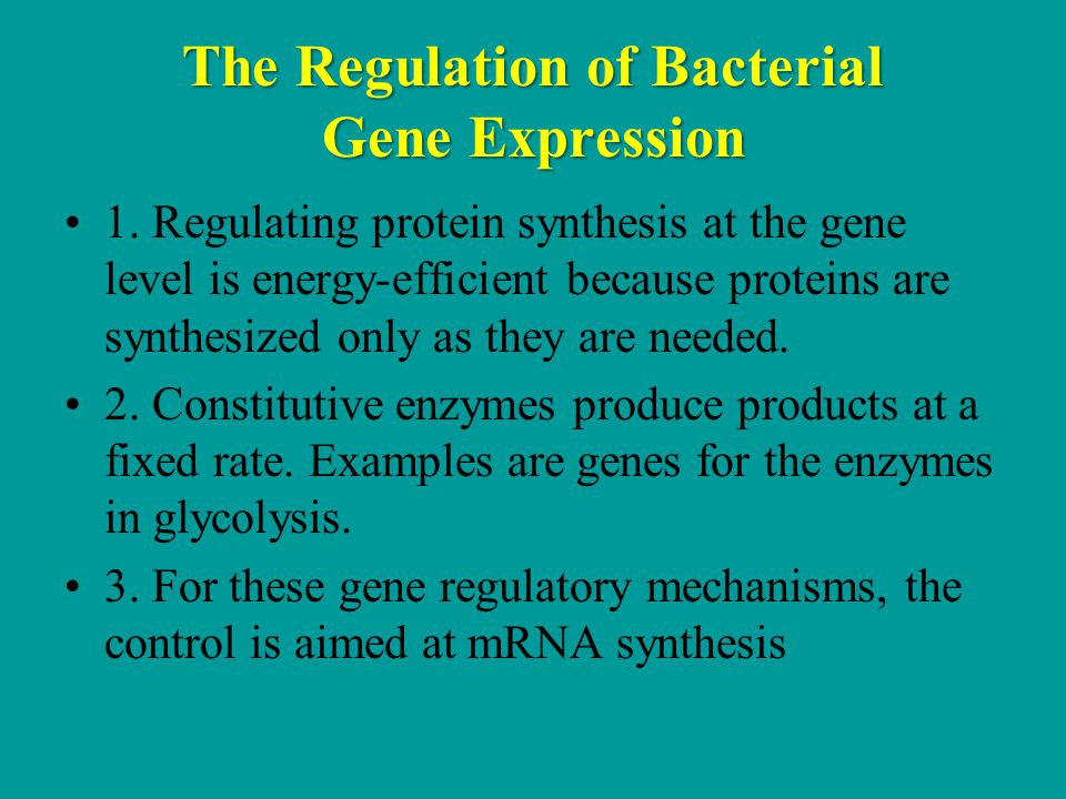 The Regulation of Bacterial Gene Expression 1.
