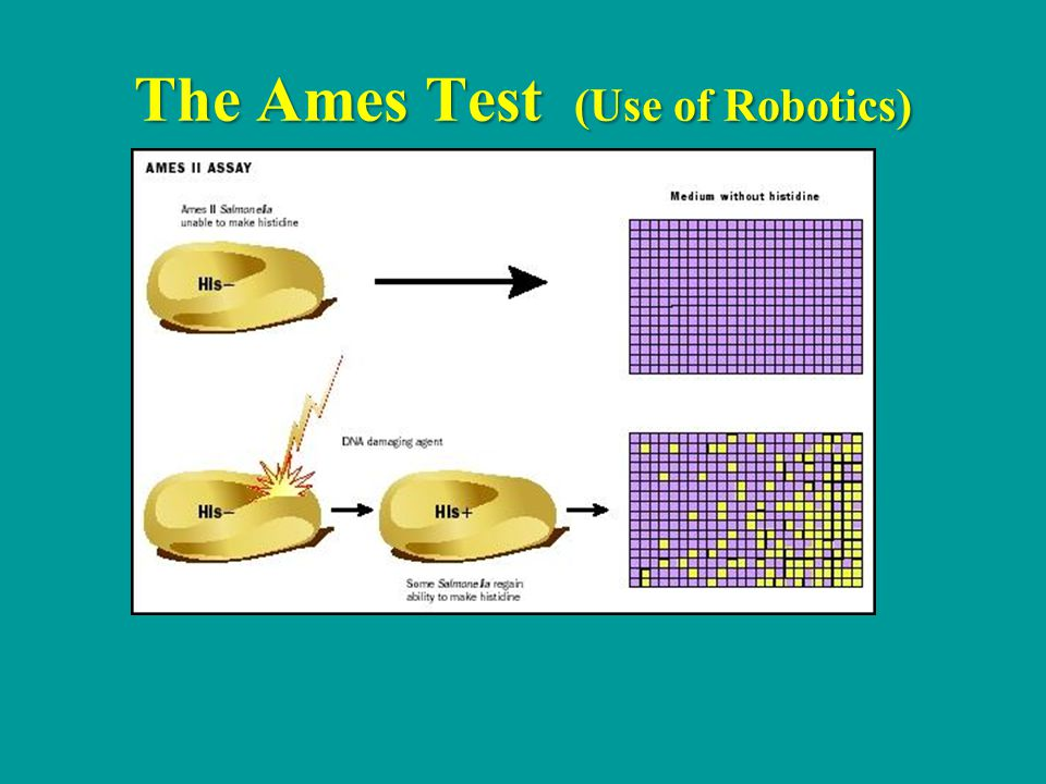 The Ames Test (Use of Robotics)