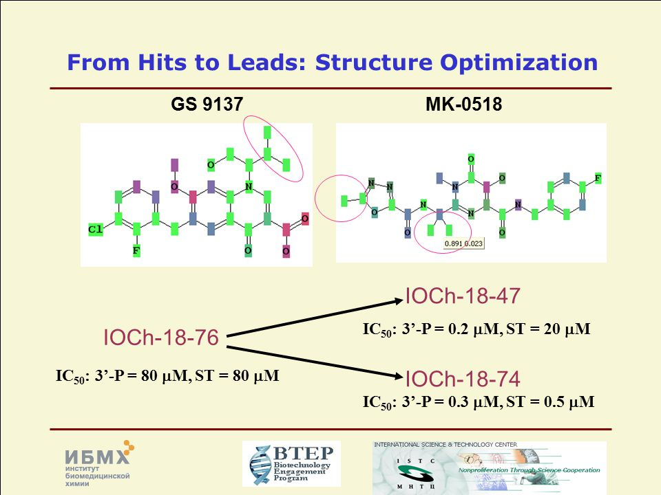 From Hits to Leads: Structure Optimization GS 9137MK-0518 IOCh-18-76 IC 50 : 3'-P = 80  M, ST = 80  M IOCh-18-47 IOCh-18-74 IC 50 : 3'-P = 0.2  M, ST = 20  M IC 50 : 3'-P = 0.3  M, ST = 0.5  M