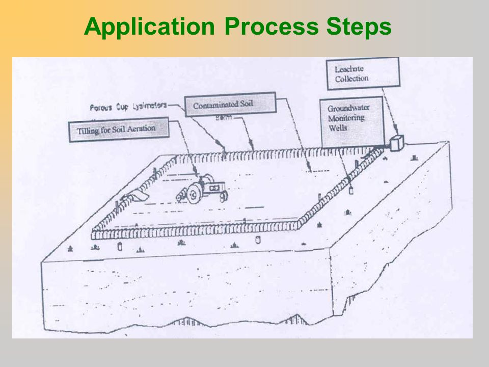 Application Process Steps