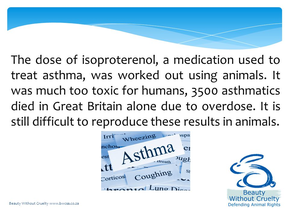 Beauty Without Cruelty www.bwcsa.co.za The dose of isoproterenol, a medication used to treat asthma, was worked out using animals.