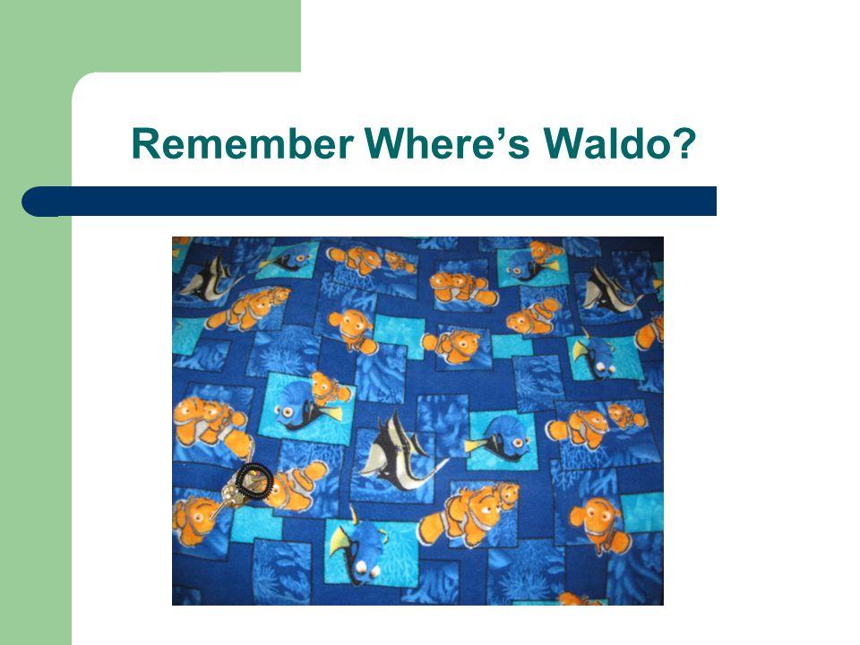 Remember Where's Waldo?