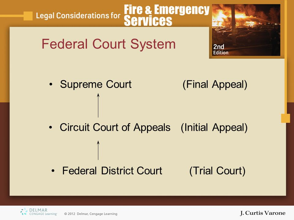 Federal Court System Supreme Court (Final Appeal) Circuit Court of Appeals (Initial Appeal) Federal District Court (Trial Court)