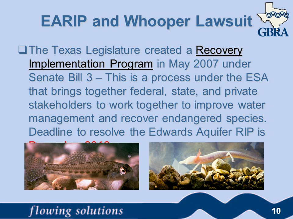 EARIP and Whooper Lawsuit  The Texas Legislature created a Recovery Implementation Program in May 2007 under Senate Bill 3 – This is a process under