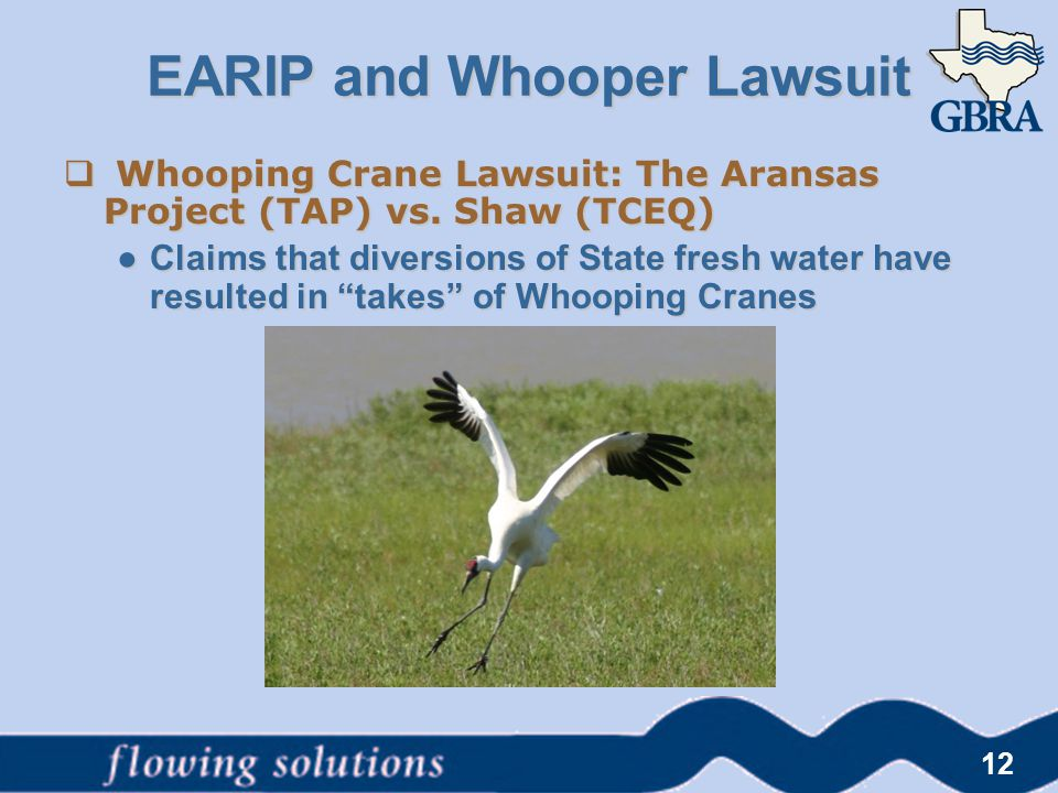" Whooping Crane Lawsuit: The Aransas Project (TAP) vs. Shaw (TCEQ) ● Claims that diversions of State fresh water have resulted in ""takes"" of Whooping"