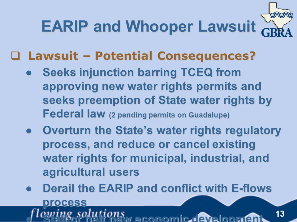 13  Lawsuit – Potential Consequences? ● Seeks injunction barring TCEQ from approving new water rights permits and seeks preemption of State water rig