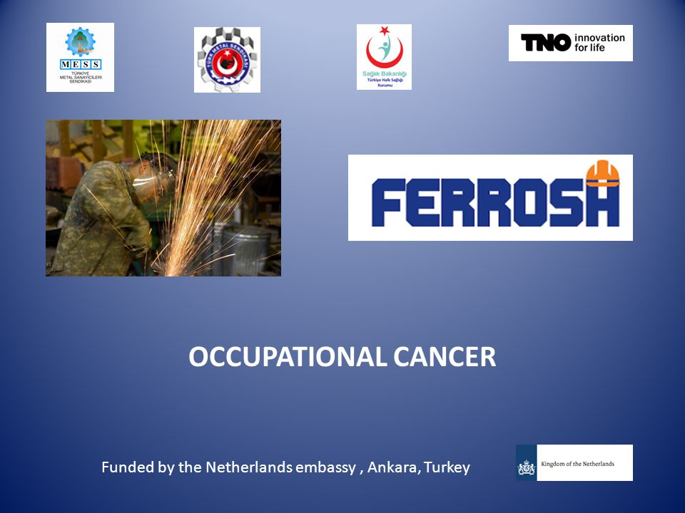 OCCUPATIONAL CANCER Funded by the Netherlands embassy, Ankara, Turkey