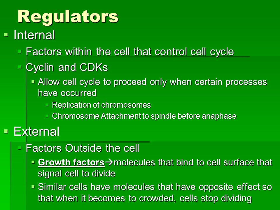 Regulators  Internal  Factors within the cell that control cell cycle  Cyclin and CDKs  Allow cell cycle to proceed only when certain processes have occurred  Replication of chromosomes  Chromosome Attachment to spindle before anaphase  External  Factors Outside the cell  Growth factors  molecules that bind to cell surface that signal cell to divide  Similar cells have molecules that have opposite effect so that when it becomes to crowded, cells stop dividing