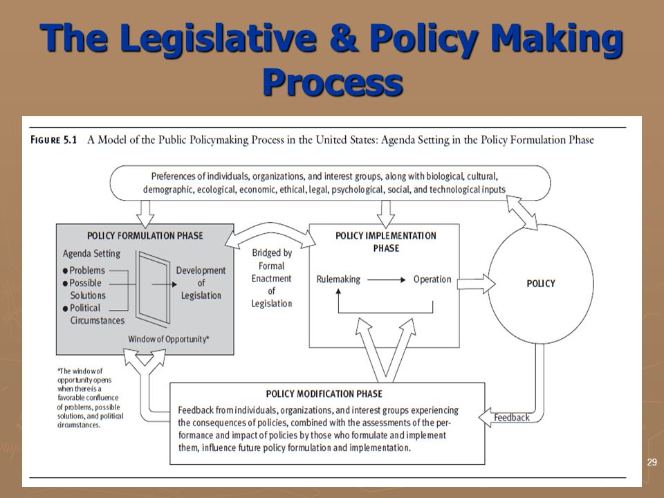 29 The Legislative & Policy Making Process