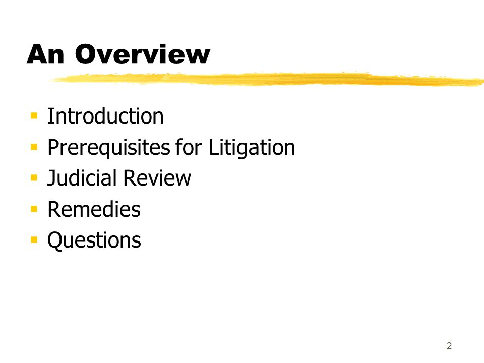 2 An Overview  Introduction  Prerequisites for Litigation  Judicial Review  Remedies  Questions