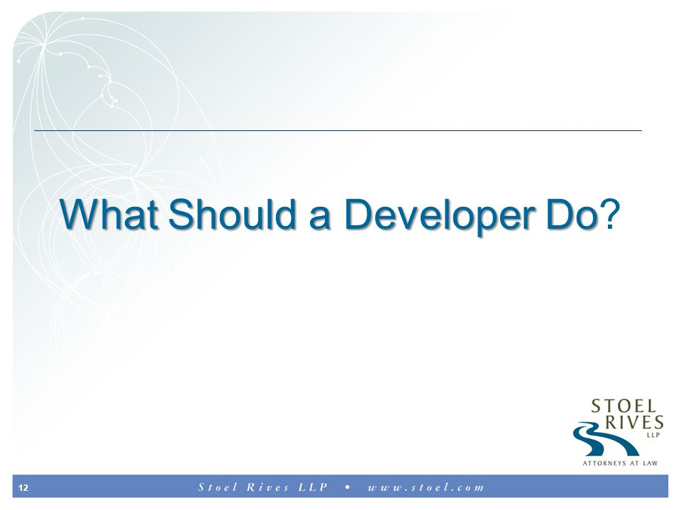 12 What Should a Developer Do What Should a Developer Do?