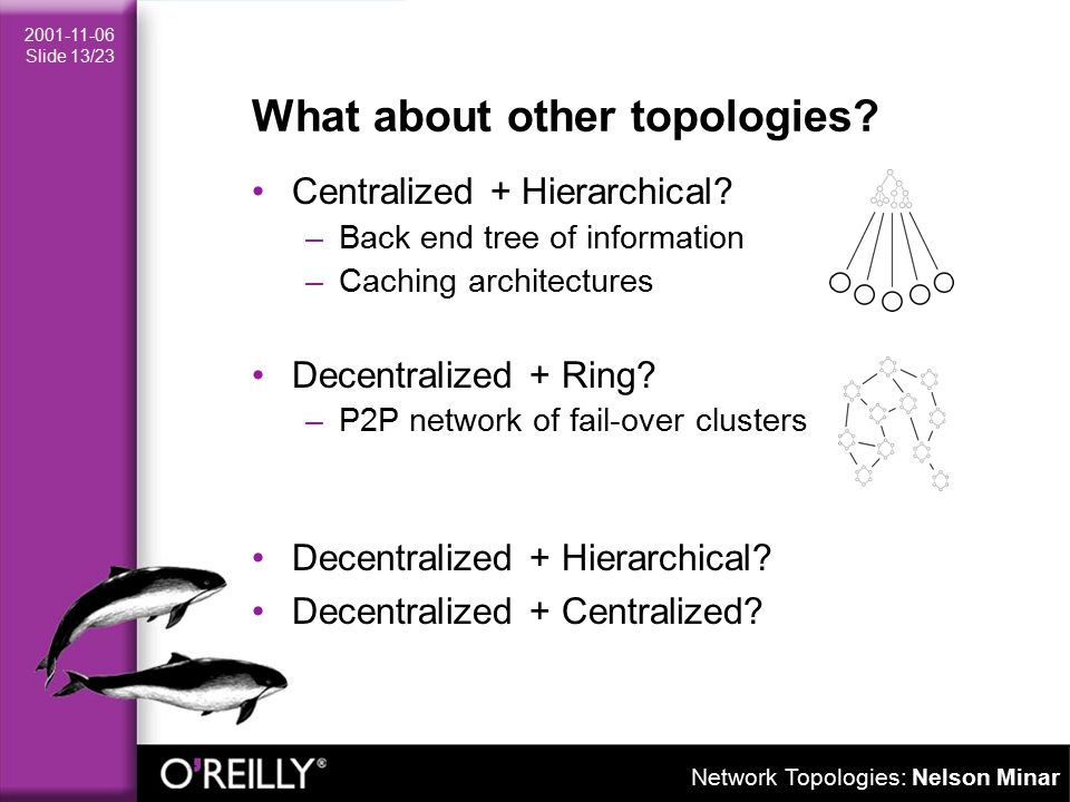 Network Topologies: Nelson Minar 2001-11-06 Slide 13/23 What about other topologies.