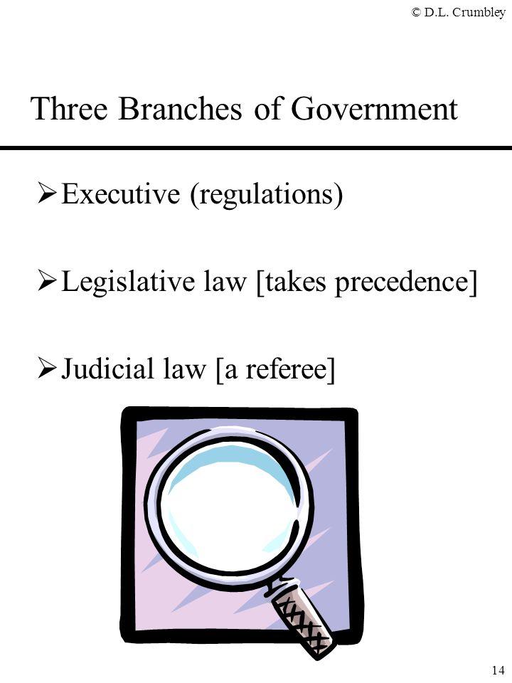 © D.L. Crumbley 14 Three Branches of Government  Executive (regulations)  Legislative law [takes precedence]  Judicial law [a referee]