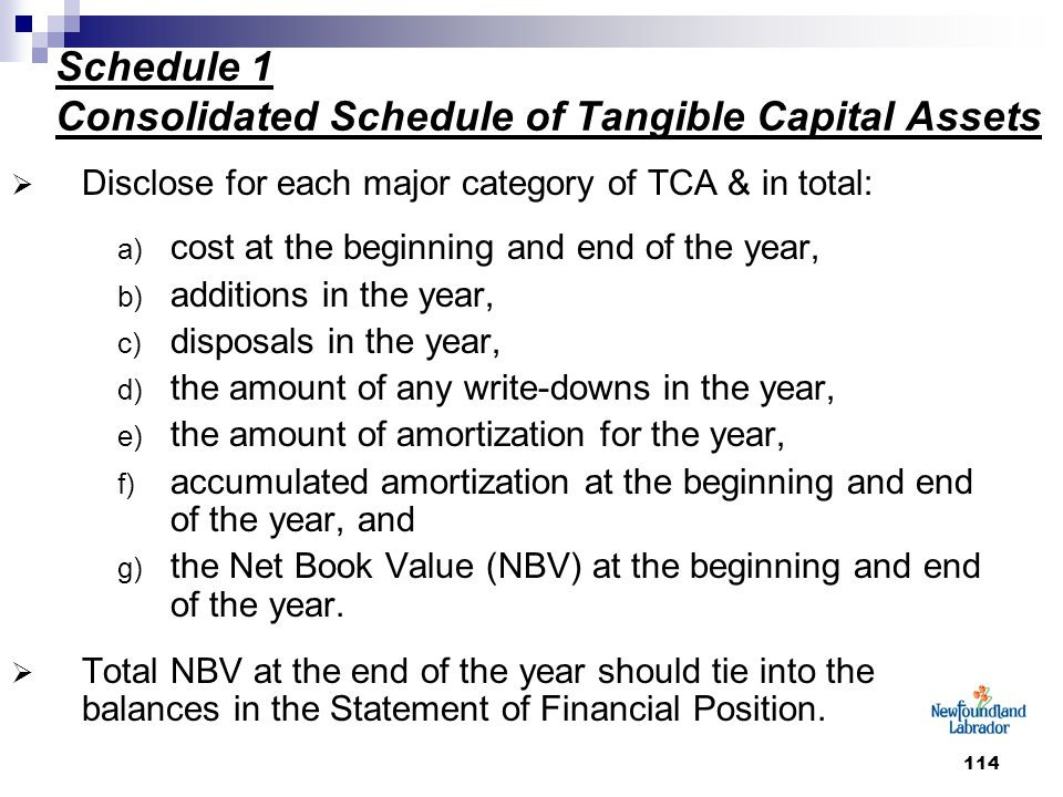 114 Schedule 1 Consolidated Schedule of Tangible Capital Assets  Disclose for each major category of TCA & in total: a) cost at the beginning and end of the year, b) additions in the year, c) disposals in the year, d) the amount of any write-downs in the year, e) the amount of amortization for the year, f) accumulated amortization at the beginning and end of the year, and g) the Net Book Value (NBV) at the beginning and end of the year.